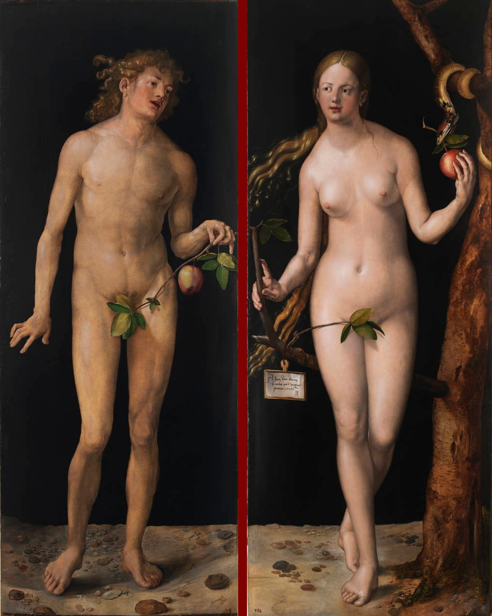 Albrecht D�rer: Adam and Eve (1507)