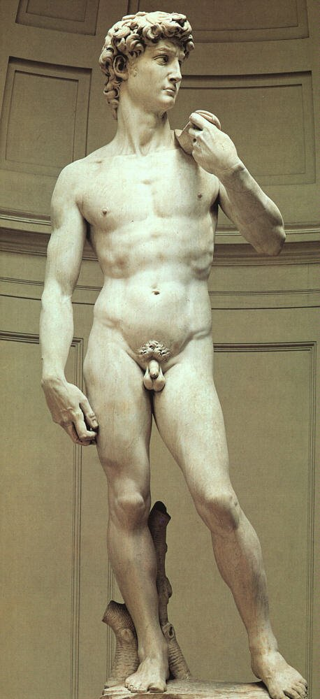michelangelo_david_grt.jpg